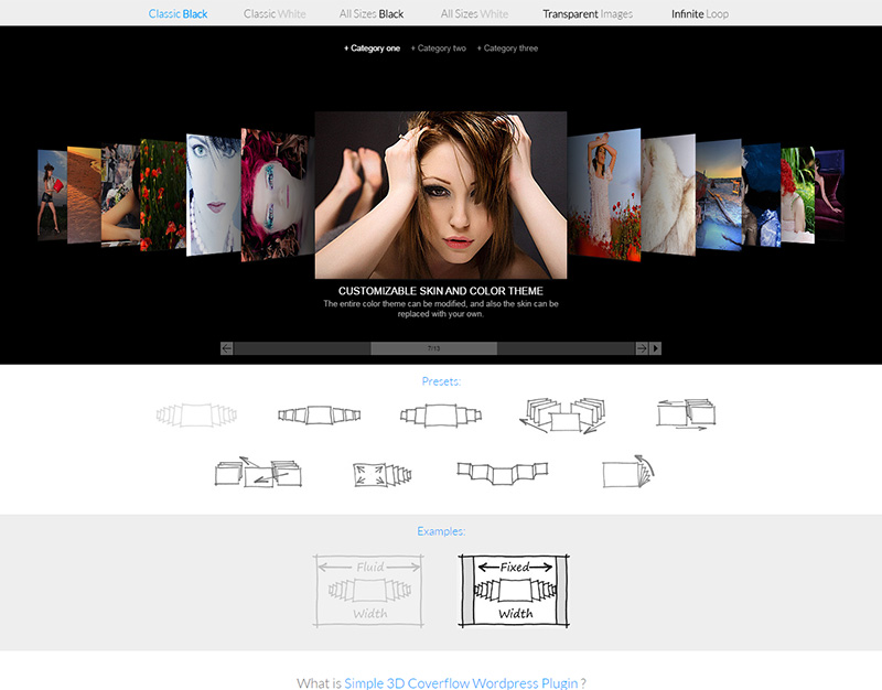 WordPress Image Carousel Gallery