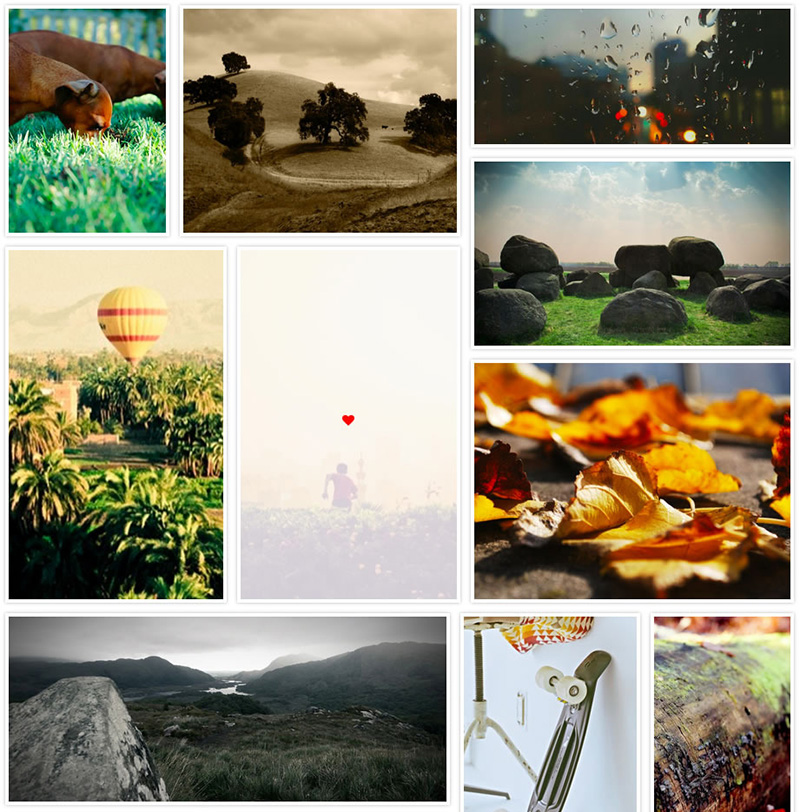 Grid Gallery WordPress Image Plugin