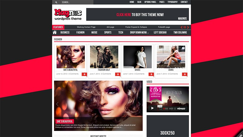 Magnus Responsive WordPress Theme